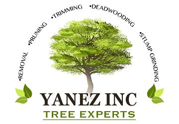 Yanez Tree Service Experts