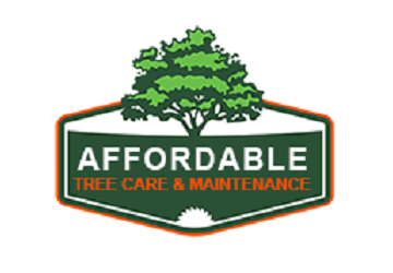 Affordable Tree Care