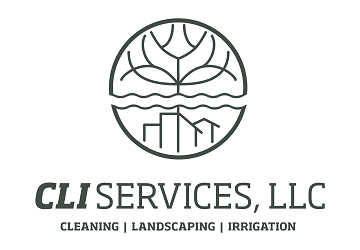 CLI Services