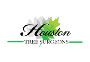 Houston Tree Surgeons