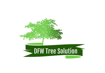 DFW Tree Solution