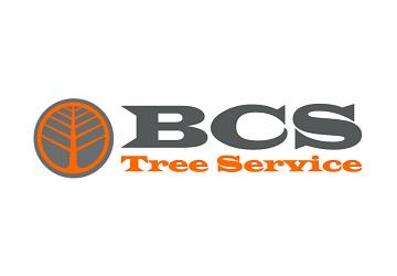 Fort Worth Tree Service
