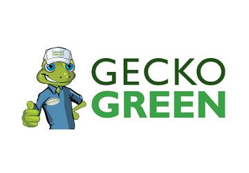 Gecko Green