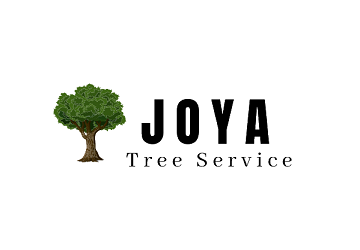 Julio Joya Tree